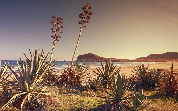 Hory, pouště a moře Andalusie, letecky, polopenze5