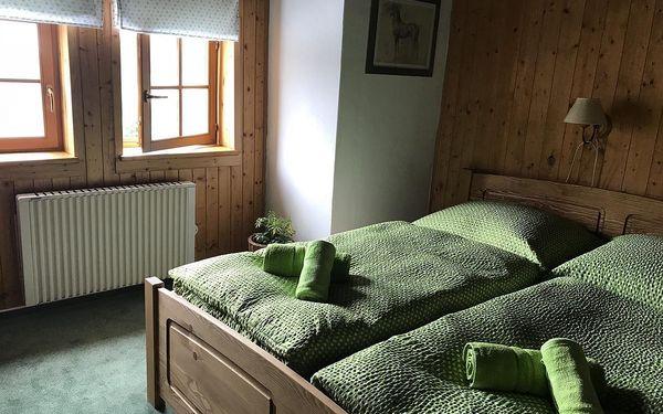 Dvoulůžkový pokoj s manželskou postelí nebo oddělenými postelemi4