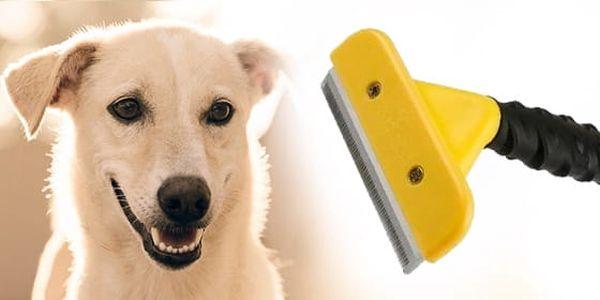 TIP! Vyčesávací hrablo pro psy a kočky