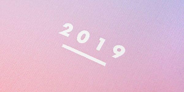 Ohh Deer Diář Ombré 2019, multi barva, papír3