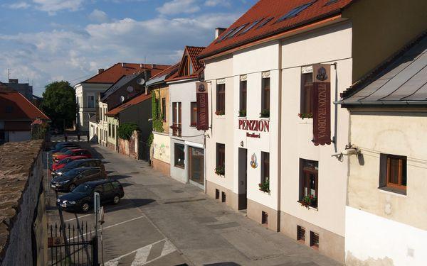 Relax v historickom centre Košíc s možnosťou masáže v penzióne Hradbová4