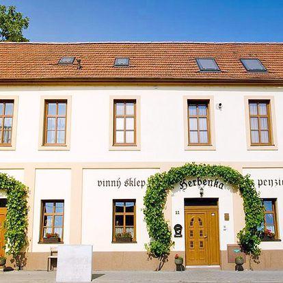 Jižní Morava v penzionu v Hustopečích se snídaní a lahví vína, i varianta pro 10 osob s neomezenou konzumací a degustací