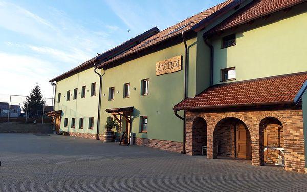 Penzion a vinný sklep Čičina