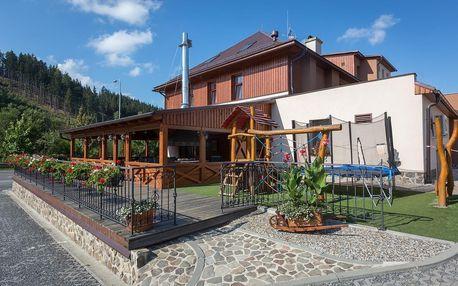 Beskydy - Valašsko: Relax Hotel Valaška