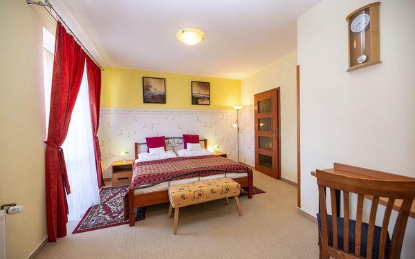 Hotel Vysočina