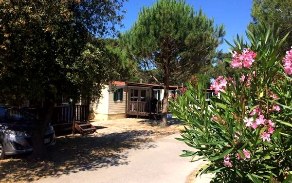 Zaton Holiday Resort - mobilní domky, Severní Dalmácie, autobusem, bez stravy4