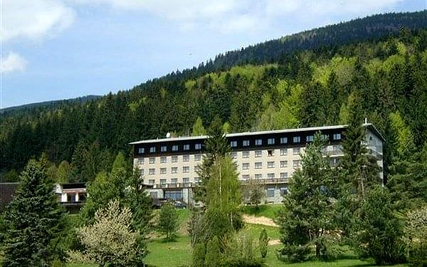 HOTEL PARTIZÁN - Brezno -Tále, Nízké Tatry, vlastní doprava, polopenze5