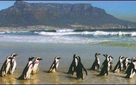 To nejlepší z Jižní Afriky - 14 dní s dopravou, ubytováním a snídaní