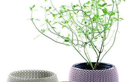 KETER COZIES Trio květináče 3ks, 15,5 x 15,5 x 10,5 cm, fialová, modrá, šedá
