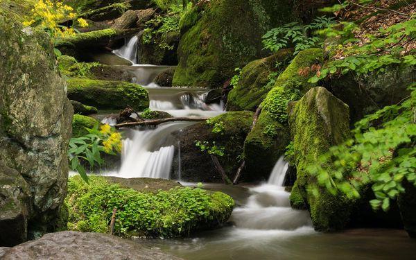 Kouzelné jaro v srdci jesenických hor na 3 až 6 dní se snídaní a saunou3