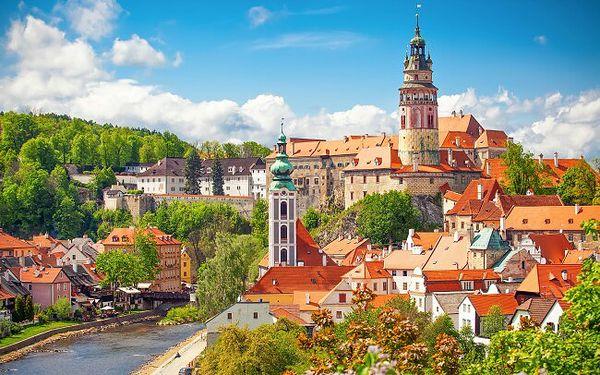 Jižní Čechy blízko památek UNESCO v Hotelu Alf *** se vstupem na koupaliště či láhví vína + polopenze