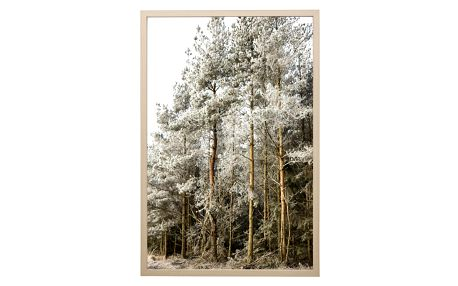Bloomingville Obraz v rámu Frozen Beauty, béžová barva, černá barva, bílá barva, plast, dřevotříska