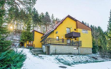 Beskydy u Pusteven a poblíž ski areálů i běžeckých stop: Penzion Na Lůkách se saunou s polopenzí