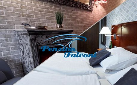 Kolín: Hotel Falconi