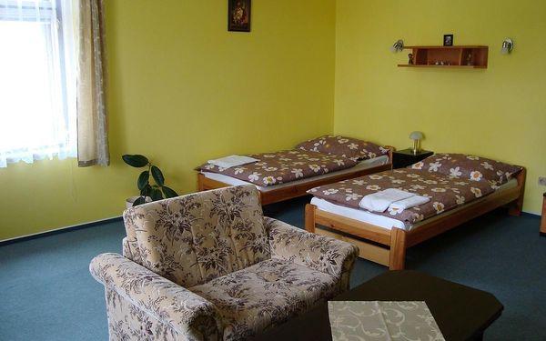 Dvoulůžkový pokoj s manželskou postelí nebo oddělenými postelemi2