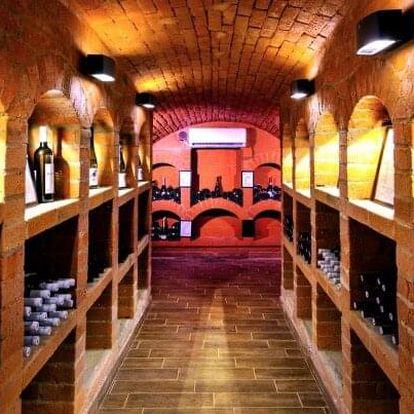 Slovácko: Pobyt ve Bzenci blízko zámku v Hotelu Lidový dům *** s polopenzí a ochutnávkou vín ve vinné galerie