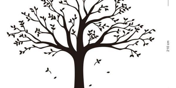 Samolepicí dekorace XXL černý rodinný strom2
