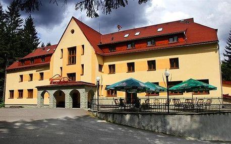 Horní Lomná - Horský hotel EXCELSIOR, Česko