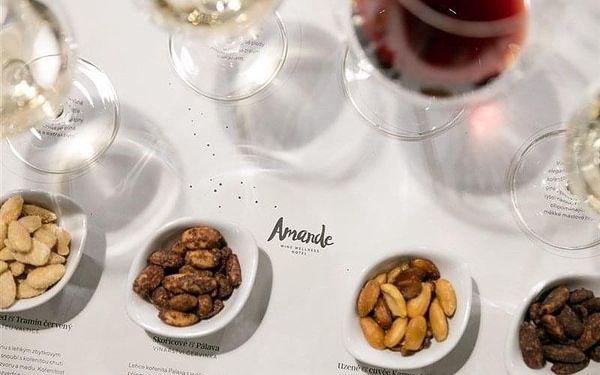 Hustopeče - AMANDE Wine wellness hotel, Česko, vlastní doprava, polopenze3