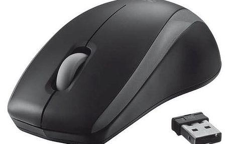 Myš Trust Carve Wireless černá (/ optická / 3 tlačítka / 800dpi) (19932)