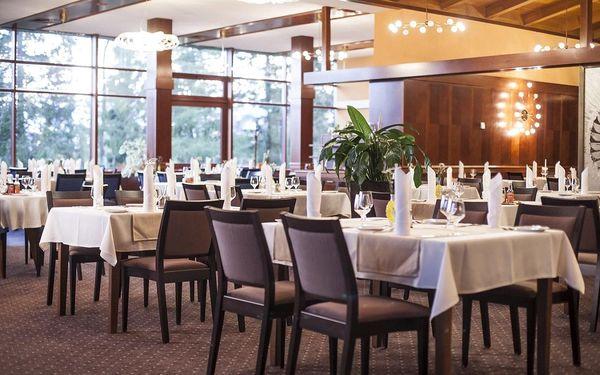 Sleva na exkluzivní tatranský hotel u Štrbském Plese s nejkrásnějším výhledem na Vysoké Tatry, Vysoké Tatry, vlastní doprava, snídaně v ceně5