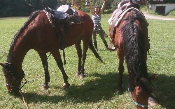 Vyjížďka na koni v Moravském krasu či jízda kočárem lokalitou dle výběru5