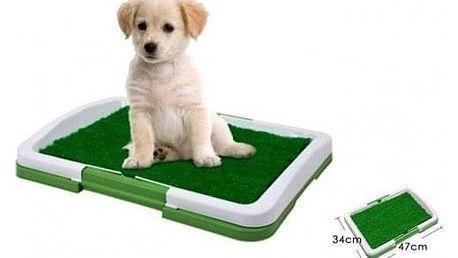 Toaleta pro psy