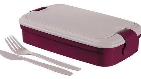 CURVER Svačinový box LUNCH & GO fialový