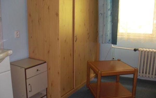 Třílůžkový pokoj s koupelnou4