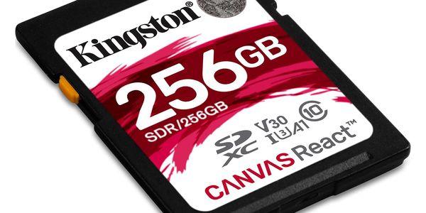 Paměťová karta Kingston SDXC 256GB UHS-I U3 (100R/80W) (SDR/256GB)3