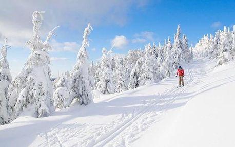 Orlické hory v Horské chatě Orlice s polopenzí - ideální pro lyžaře i běžkaře
