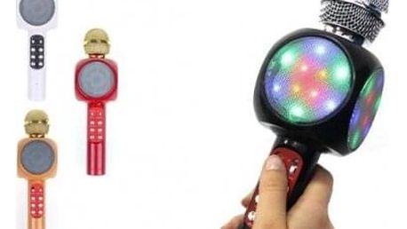 Karaoke mikrofon WS-1816