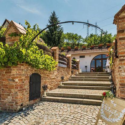 Rodinné Vinařství Krýsa na jižní Moravě s polopenzí a prohlídkou vinohradu