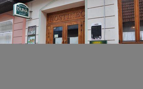 Slovensko, Komárno: Penzion Duna