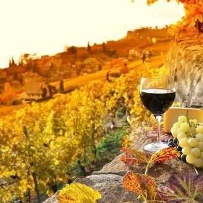 Jižní Morava s polopenzí a neomezenou konzumací vína v Penzionu V Zahraničí