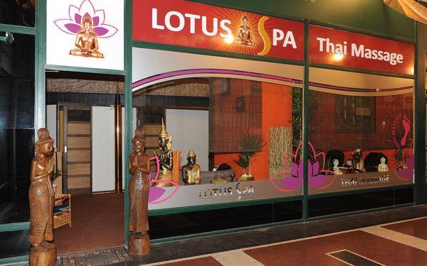 60 minut: Thajská masáž, masáž nohou nebo masáž aromatickými oleji5