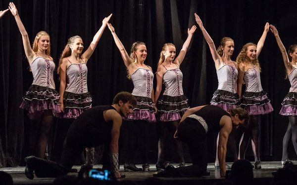 Rinceoirí - klub irských tanců
