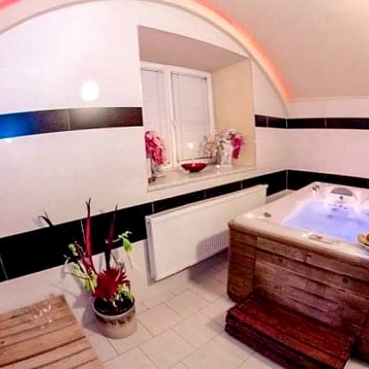 Relaxační pobyt v Hotelu Allvet *** u Vyškova s wellness, snídaní a vínem