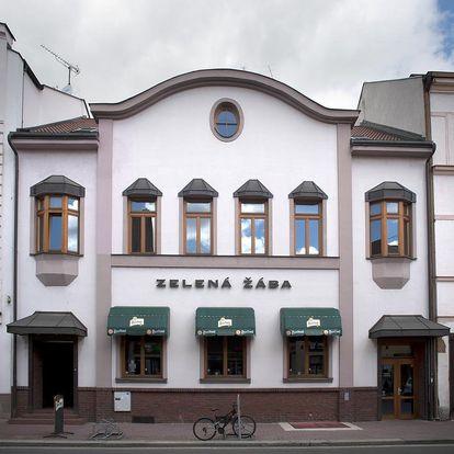 Pardubice: Penzion Zelená Žába