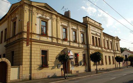 Hradec Králové: Penzion Černý Kůň