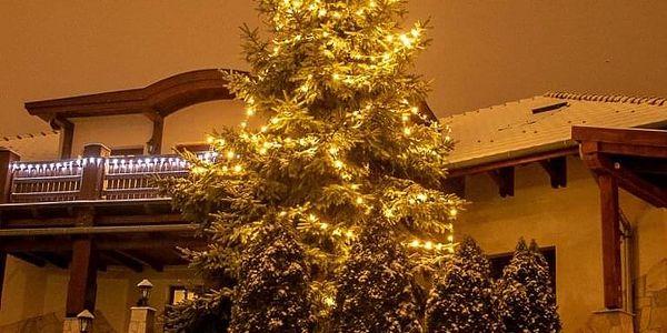 VOLTRONIC® 1223 Vánoční LED osvětlení 20 m - teple bílá 200 LED3