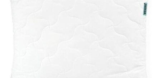 Wendre polštář Aloe Vera, 70 x 90 cm