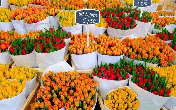 Objevte fantastický Amsterdam 3 dny / 2 noci, 2 os., snídaně3