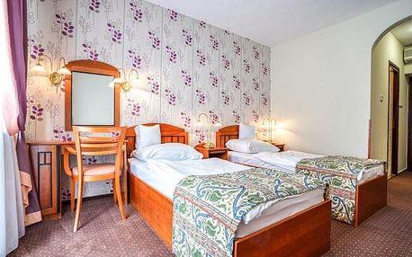Maďarsko v Hotelu Erzsébet *** se vstupenkou k termálnímu jezeru Hévíz, neomezeným wellness a polopenzí