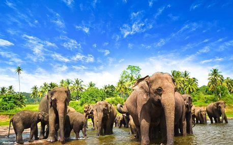 Srí Lanka letecky na 10 dnů, strava dle programu