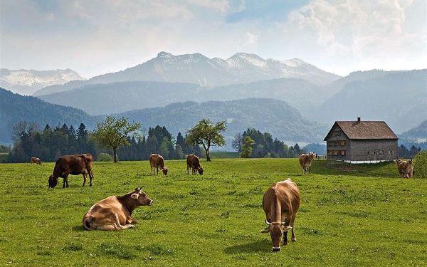 Za krásami Tyrolska a Vorarlberska, autobusem, polopenze2
