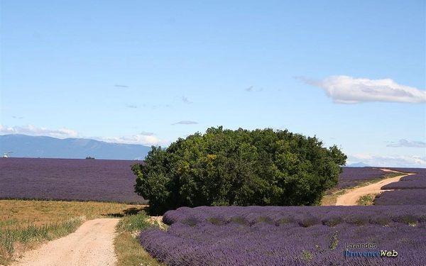 Nejkrásnější místa Provence - letecky, Provence, letecky, snídaně v ceně2