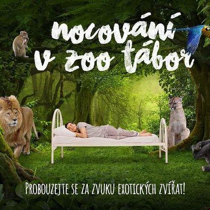 Nocování v ZOO Tábor mezi exotickými zvířaty