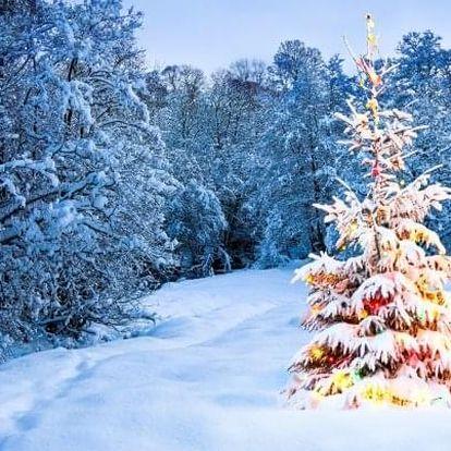 Vánoce v Harrachově: Hotel Karolína *** s polopenzí a wellness s bazénem