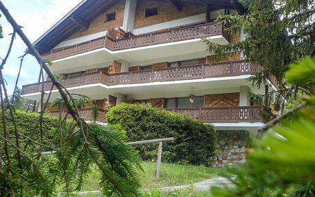 Švýcarsko - Švýcarské Alpy na 7 dní, bez stravy s dopravou vlastní
